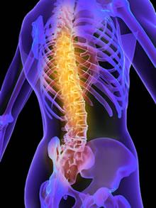 Boise Chiropractor Spine